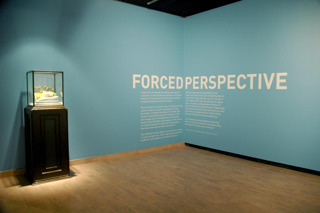 Forced Perspective installation view